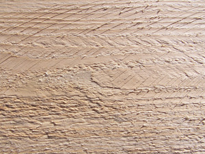 Photo of sawn board